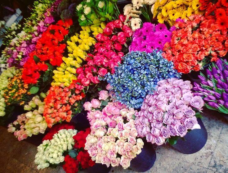 """2 aprecieri, 1 comentarii - Floraria Dorothy's (@florariadorothys) pe Instagram: """"Colors.. #for #weekend #cluj #clujnapoca #clujcenter #florariecluj #lifeincluj #viataincluj…"""""""
