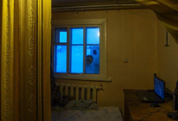 На краю мира. Валькаркай — труднодоступная полярная станция на арктическом побережье Восточно—Сибирского моря.   Источник: http://www.adme.ru/foto-dnya/na-krayu-mira-1112910/ © AdMe.ru