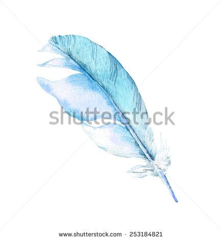 Feather of blue bird. Watercolor