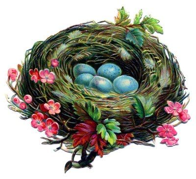 Click on Image to EnlargeThis is a charming Victorian Bird's Nest with some lovely Blue Eggs inside! This is another one that I picked up recently at my local Antique Mall. I think the pink flowers along the side of the nest, make it especially pretty!