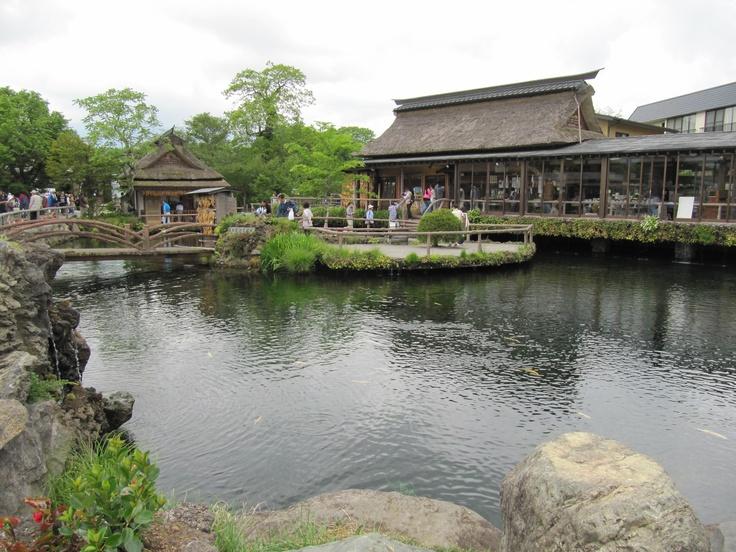 Oshino - Hakkai