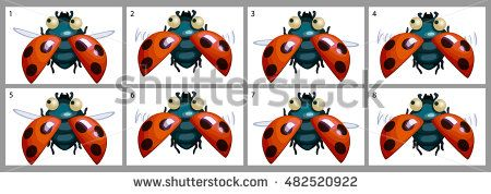 Cartoon vector beautiful ladybird animation fly. Game icon funny flying insect. Vector design for app user interface.