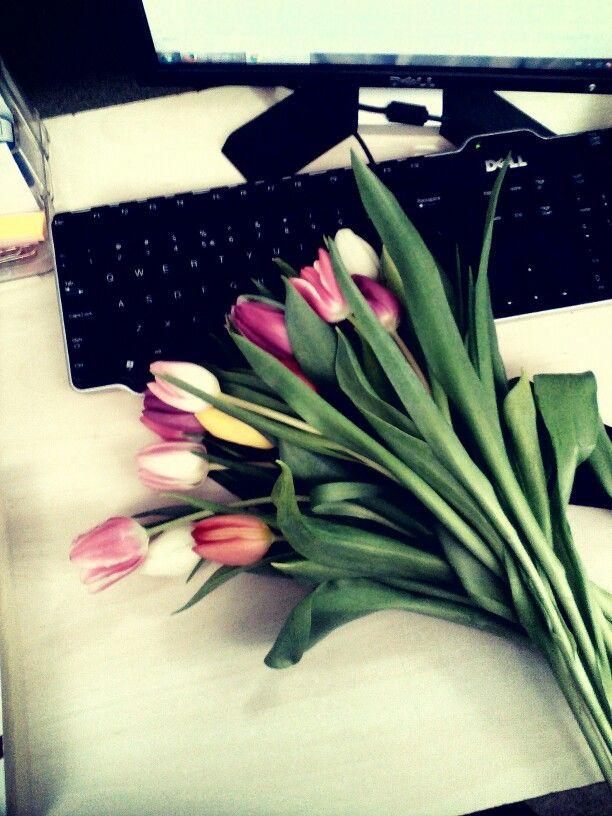 work work work | tulips