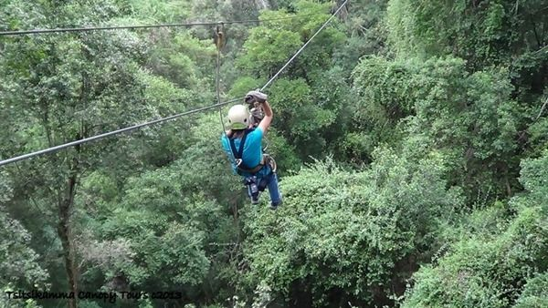Zip-lining through the tree tops with Tsitsikamma Canopy Tours in South Africa was the thrill of a life time. http://geogypsytraveler.com/wp-content/uploads/2013/08/08-4534d-Gaelyn-on-zip-Tsitsikamma-Adventures-Canopy-Tour-Storms-River-SA.jpg