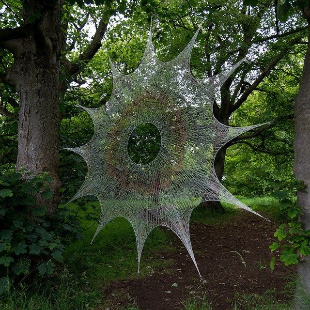 spider web- - - don't get caught...!!