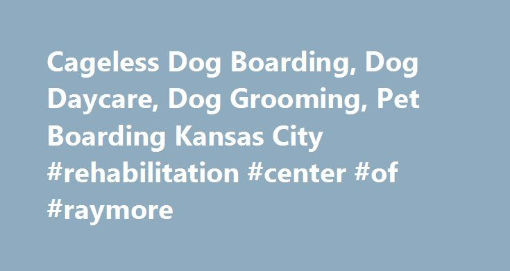 Cageless Dog Boarding, Dog Daycare, Dog Grooming, Pet Boarding Kansas City #rehabilitation #center #of #raymore http://santa-ana.remmont.com/cageless-dog-boarding-dog-daycare-dog-grooming-pet-boarding-kansas-city-rehabilitation-center-of-raymore/  # Cage-less Dog Boarding Dog Daycare Professional Dog Grooming Dog Food, Treats, Bones, Toys, Collars & Leashes What our clients are saying I highly recommened Dog Pawz for grooming, play days, and overnights. We left town and had our boxer stay…