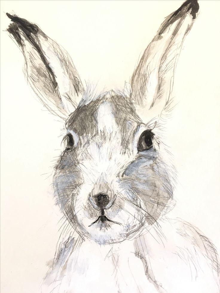 Bunny girl forex indicator