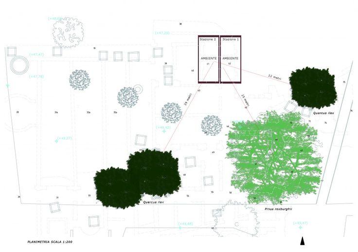 Stralcio planimetrico del giardino: estensione degli apparati radicali - Archivio SSBAR
