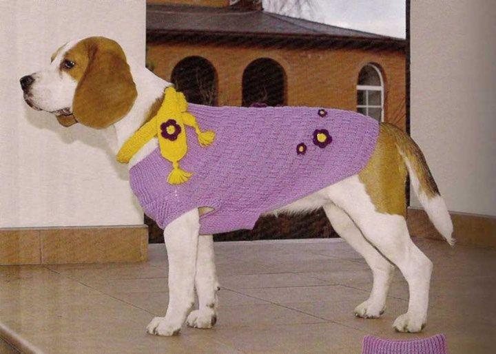 """6.3 *Вязание свитера для собак 2. - вязание для собак и кошек , свитера, кофты, попоны для собак, комбинезоны, шапочки, обувь для собак, скачать бесплатно книгу Корин Ниснер """"Вяжем для четвероногих модников"""", needleworkdogss Jimdo-Page!"""