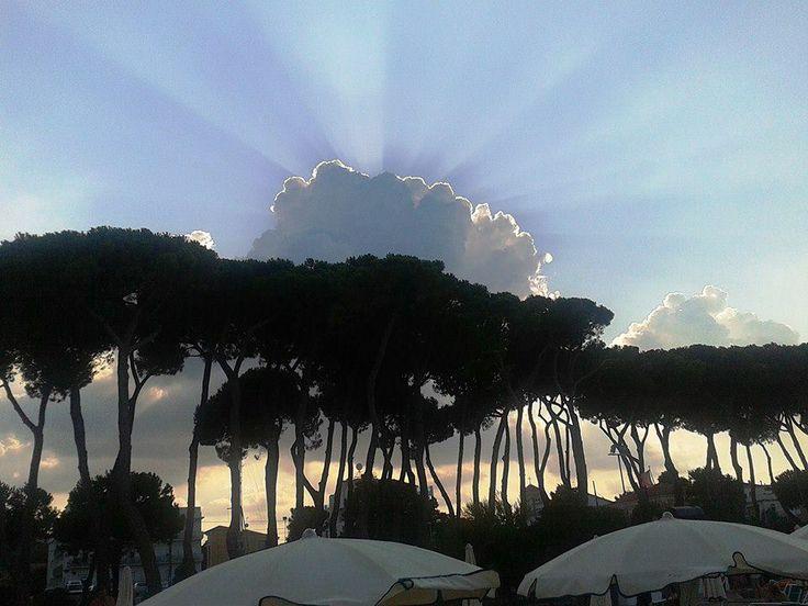 The sun under the pinewood. Hotel la Pineta, Pineto.