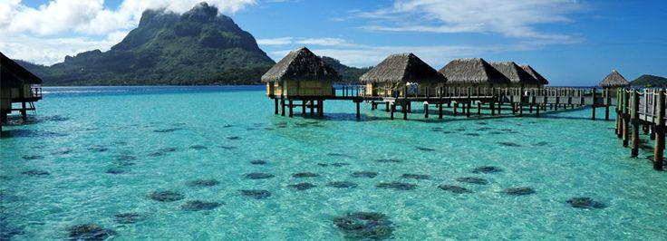 C'est la fête du Monoï 🌺 à Tahiti, cette huile de soin naturelle, obtenue par macération de la fleur de tiare avec de la noix de coco. ............................................................ #fete #Monoi #tahiti #polynesiefrancaise #plage #paradisiaque #lunedemiel #honeymoon #romantique #romantic #charme #travel #trips #merveille #tripadvisor #voyageexpert #wanderlust #viator #getaway #voyage #tourisme #decouverte #bucketlist #vacances #holidays #amazingdestination