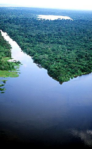 Parque Amacayacu in Colombia