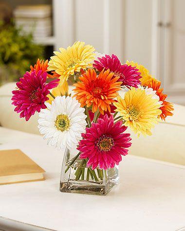 Gerbera Daisies, hydrangea, sunflowers, etc. flower arrangement.  (short tabletop arrangement with bright colors)