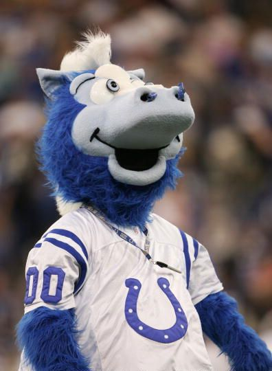 Blue the #Indianapolis #Colts Mascot - #Football
