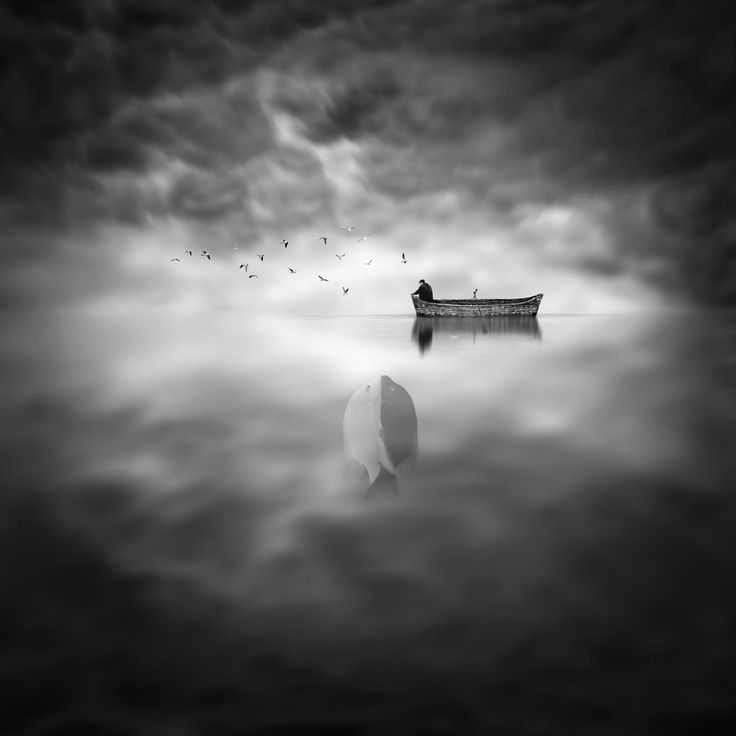 Photograph A Fish Tale by Sherry Akrami on 500px