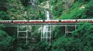 We rode the scenic railway from Cairns to Kuranda, Australia.