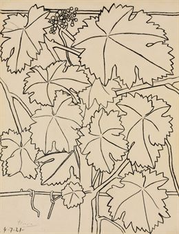 Picasso - contour drawing of leaves