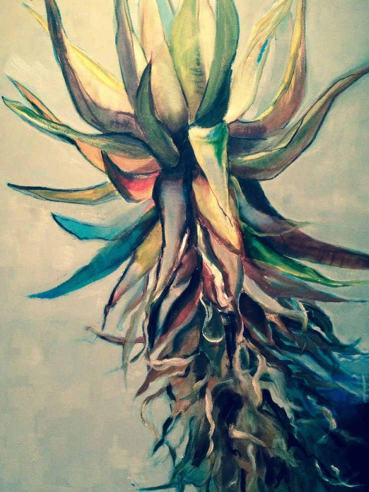Aloe from Mount Pleasant Farm by Michelle Chelius. Oil on canvas. 2014.
