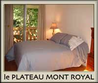 Charming furnished apartment in Montreal. 1 bedroom. 2 balconies. Plateau area. Weekly. Weekend.