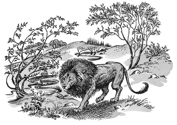 CS Lewis Facts: 11 Things You Never Knew About The Narnia Author✎  ~Narnia Illustration~  The character of Puddleglum, who appears as a principle character in The Silver Chair, was based on Lewis' gardener, Fred Paxford.