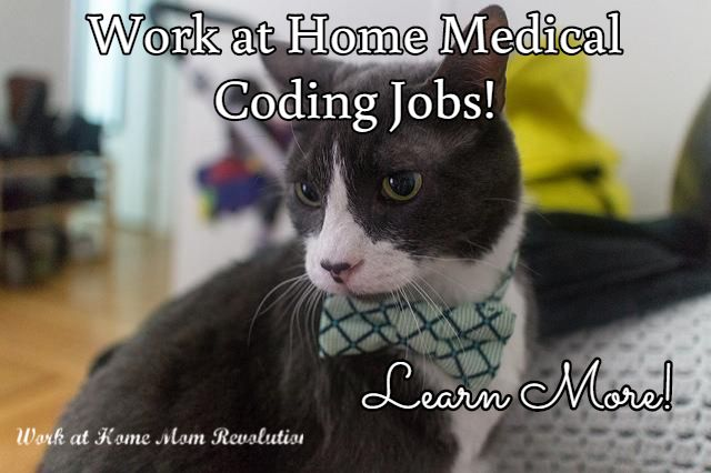 Lexicode Work At Home Medical Coding Jobs Medical Coding Jobs