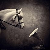 photoallegory of sarolta bán | digital photography | B&W | photography manipulation