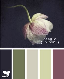 @Jodi Wissing Wissing Nicole how about this? With Navy, olive, pale green and some lilac? I love the purple on the far right. It's a bit greyed out, so it's not so PURPLE