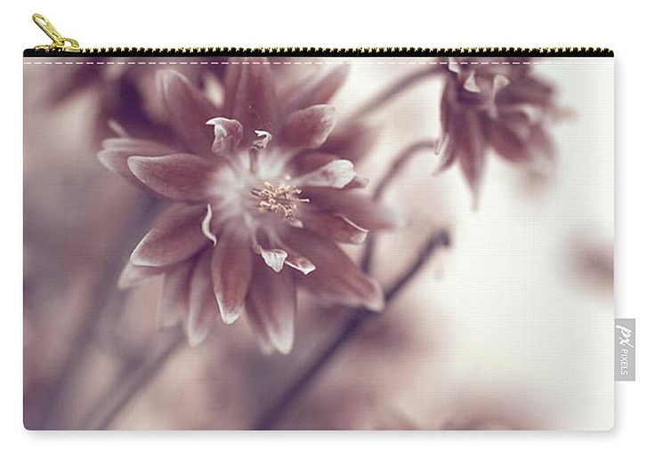 """Eternal Flower Dreams  Carry-All Pouch by Jenny Rainbow.  Our pouches are great.  They're availabe in sizes from 6"""" x 5"""" up to 12.5"""" x 8.5"""".  Each pouch is printed on both sides (same image)."""