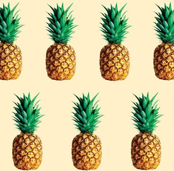 PINEAPPLE: A tropical plant (Ananas comosus) having large swordlike leaves and a large, fleshy, edible, multiple fruit with a terminal tuft of leaves.