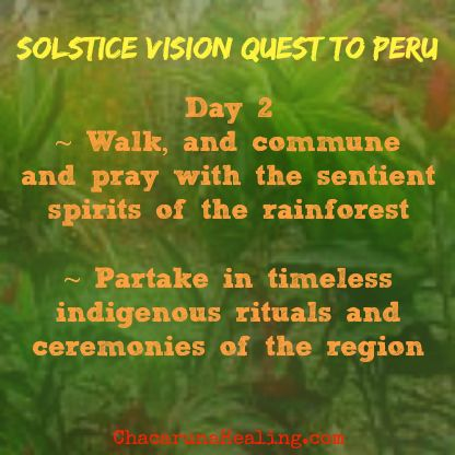 """In the #rainforest, surrender all to the #sacred, to the nourishing energies of #Pachamama. Contact mona@chacarunahealing.org for info & reservations. Visit the """"Peru Trips"""" page at ChacarunaHealing.com take a look at the itinerary. #travel #SacredSites  #Summer #Solstice #VisionQuest #Peru #SouthAmerica #Spirit #GreatMystery #ttot"""