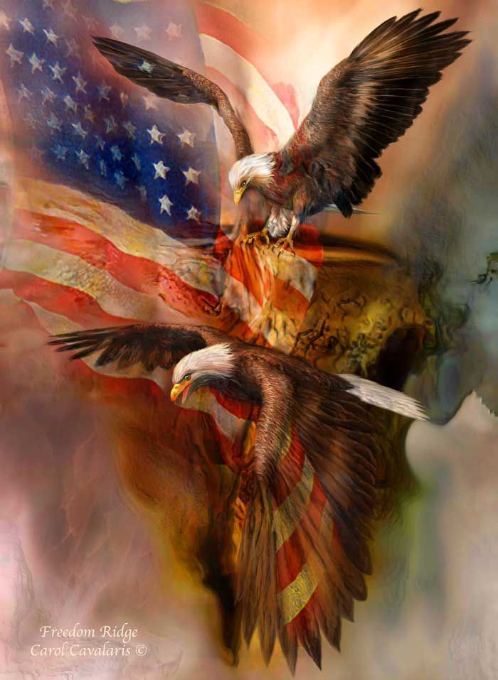 a study of the patriotic act of the united states of america Celebrate america with one of these patriotic scholarship  american dream more than these patriotic scholarships  across the united states,.