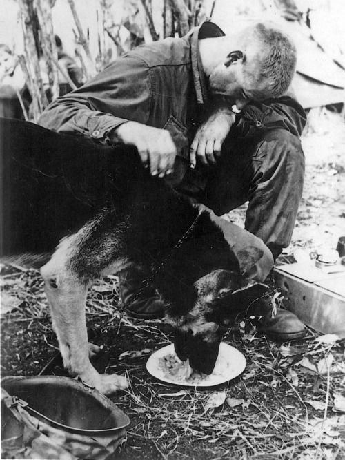 Feeding time after a mission with elements of the 4th Infantry Division, US Army, Kontum Province, 1968.