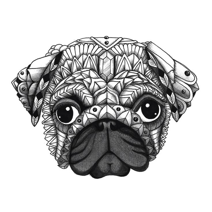 "Ornate Pug from my ""Decorative Dogs"" adult coloring book. See it here: https://www.amazon.com/Decorative-Dogs-Coloring-Featuring-Serenity/dp/1944943013"