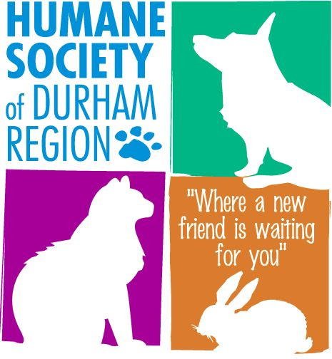 Humane Society of Durham Region. Love for all beings #yoga #animals #adoptapet