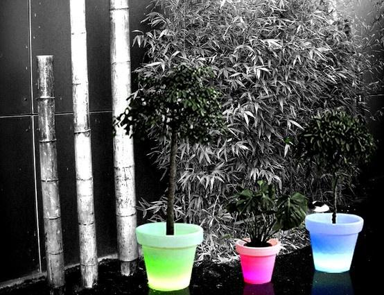 Macetero luminoso con cambio de color (gracias a sus LEDS), y mando a distancia. Los colores cambian según sus humores y según el ambiente que usted desea crear. Programas de cambio de color pregrabados, pero es posible grabar su propio programa, que usted controla a distancia gracias al mando a distancia.