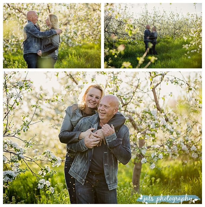 Older couple engagement apple blossoms