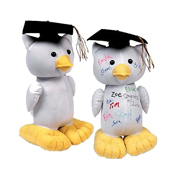 Autograph Graduation Owl   Wally's Party Factory #graduation #owl #signature #keepsake