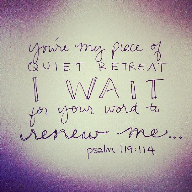 """""""You are my refuge and my shield; I have put my hope in your word.""""- Psalm 119:114::cM"""