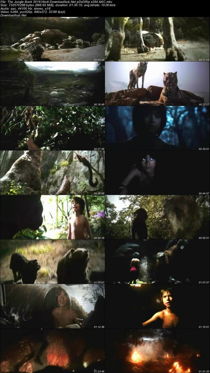 Screen Shot Of The Jungle Book 2016 Hindi Dubbed 700MB pDVDRip x264 Free Download