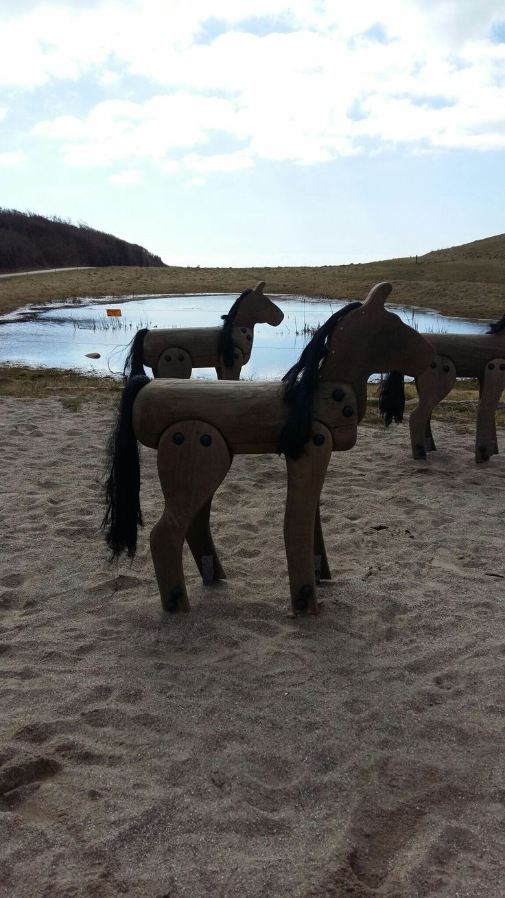 De vilde heste på langeland