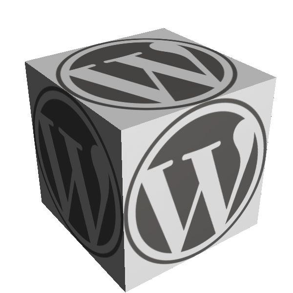 Business WordPress Websites in Ireland Tells what a websites needs