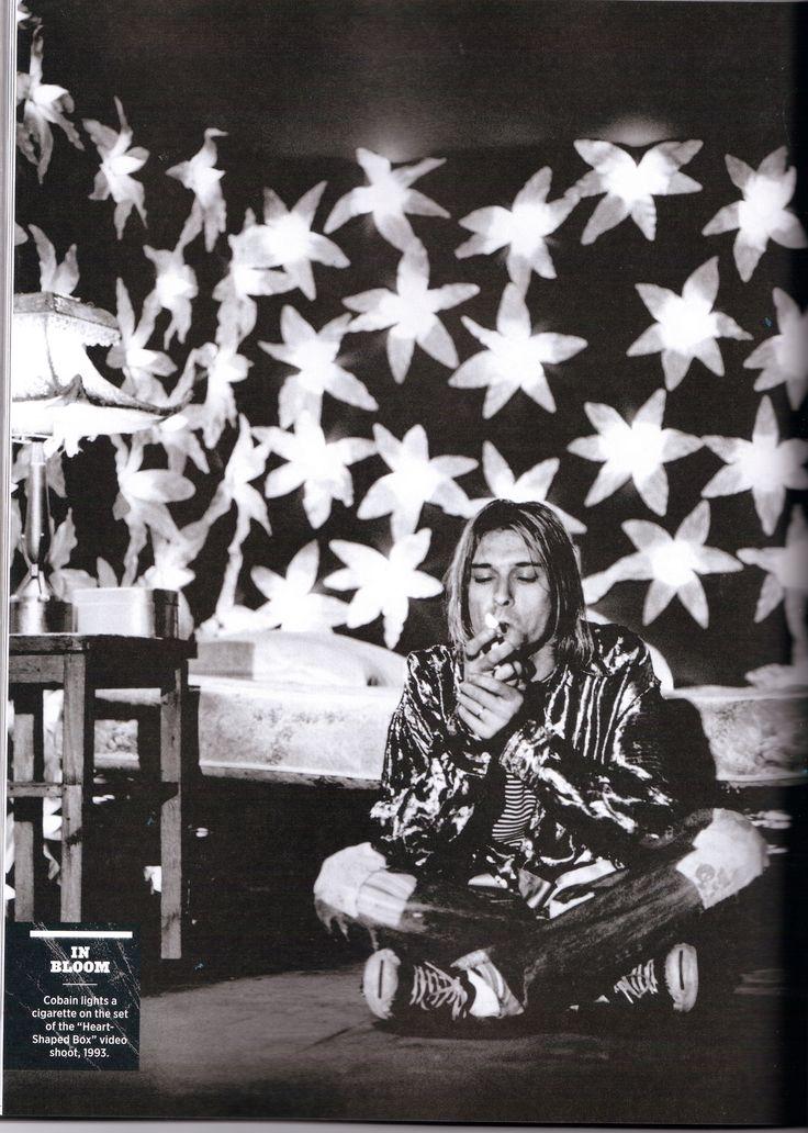 Nirvana In bloom Grunge