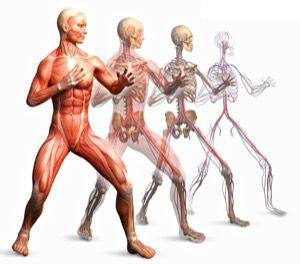 Stabila grejer: Bli instruktör? Hur man lär ut kickboxning och konditionspass --> http://wolber.se/instruktor-hur-kickboxning-konditionspass/