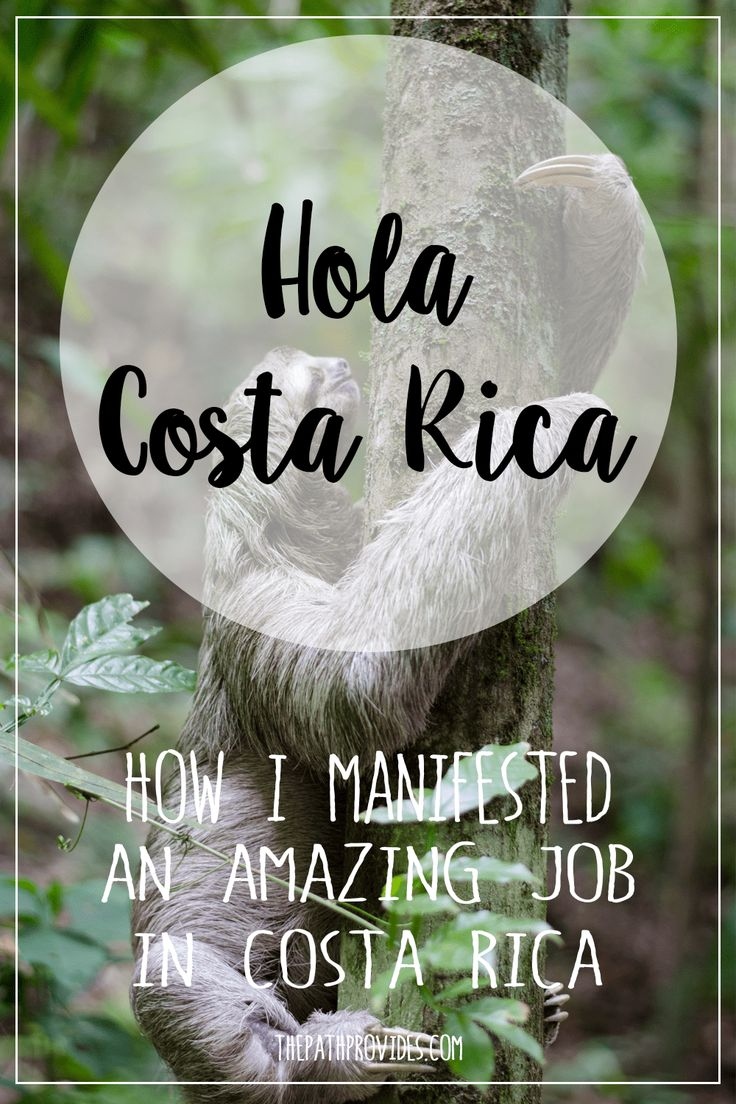 Law of Attraction |After manifesting a dream job in Costa Rica I realized that the Universe is always listening