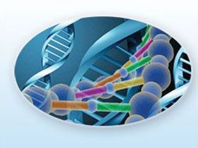 Müthiş Keşif DNA Bilgisayar - Harunyahya.org