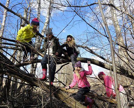 Kouluille — Luonto-Liitto, monimuotoisen metsän taika -tehtäväpaketti