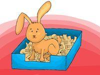 Enseñarle al conejo a utilizar la caja de arena es la primera cosa que debes hacer si consigues un conejo como mascota