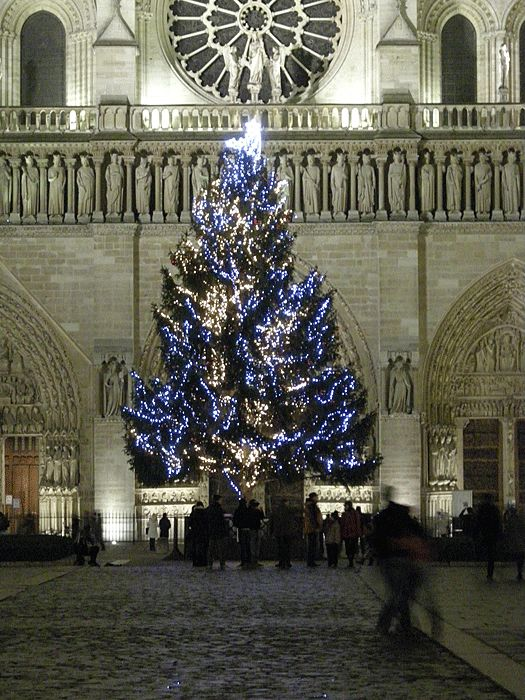 Top 10 Christmas Lights Displays: Christmas Tree outside Notre Dame, Paris, France. Photo by couscouschocolat