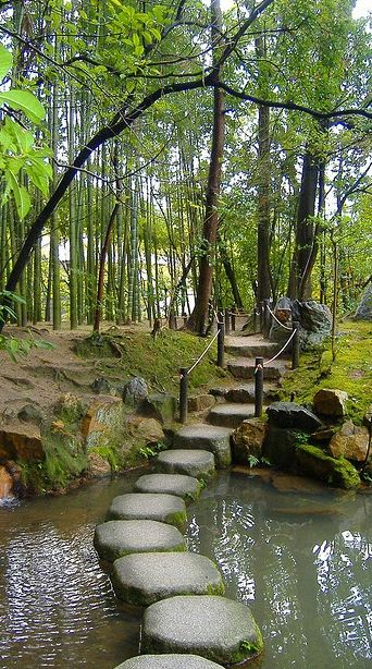 Stepping stones ~ Tenjuan Gardens ~ Kyoto, Japan • photo: Sharilyn Anderson • http://visitheworld.tumblr.com/post/36867898708/stepping-stones-in-tenjuan-gardens-kyoto-japan