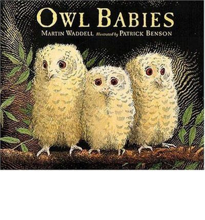 Owl Babies reassures children as it enchants their parents, offering the gentle sure promise needed by every young child that Mommy will always come home. When three baby owls awake in the middle of the night to find their mother gone, they fret and worry and try to be brave until, at last, she returns. Full color.